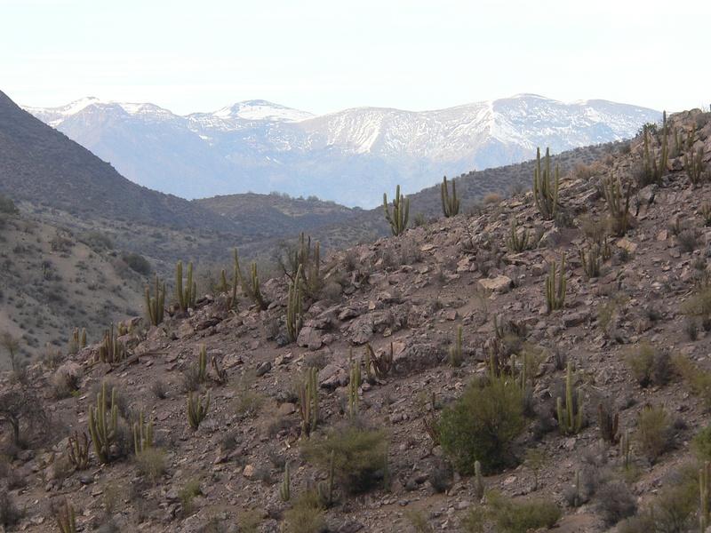 Sendero de Chile / Chilean Trail